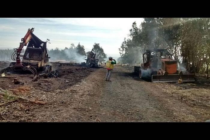 El hecho se registró pasadas las 4:30 de esta madrugada al interior de un fundo de propiedad de la Forestal Tierra Chilena, ubicado en el sector San Ignacio. Carabineros investiga […]