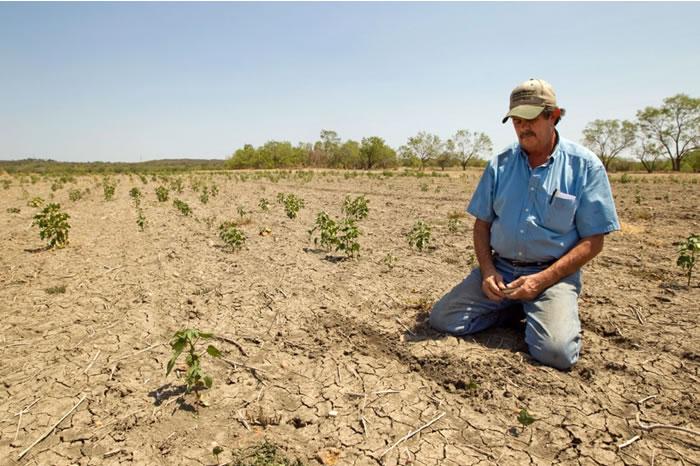 El parlamentario se mostró preocupado por la falta de precipitaciones y solicitó a la Onemi e Indap de La Araucanía junto a la Seremi de Agricultura, entregar los informes pertinentes […]