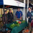 La iniciativa permitió apreciar la alta calidad ofrecida por los productores agrícolas de la zona.