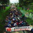 El pasado domingo 6 de noviembre, en la comuna de Renaico -provincia de Malleco- se reunieron más de mil personas para marchar por las calles de la localidad contra el […]